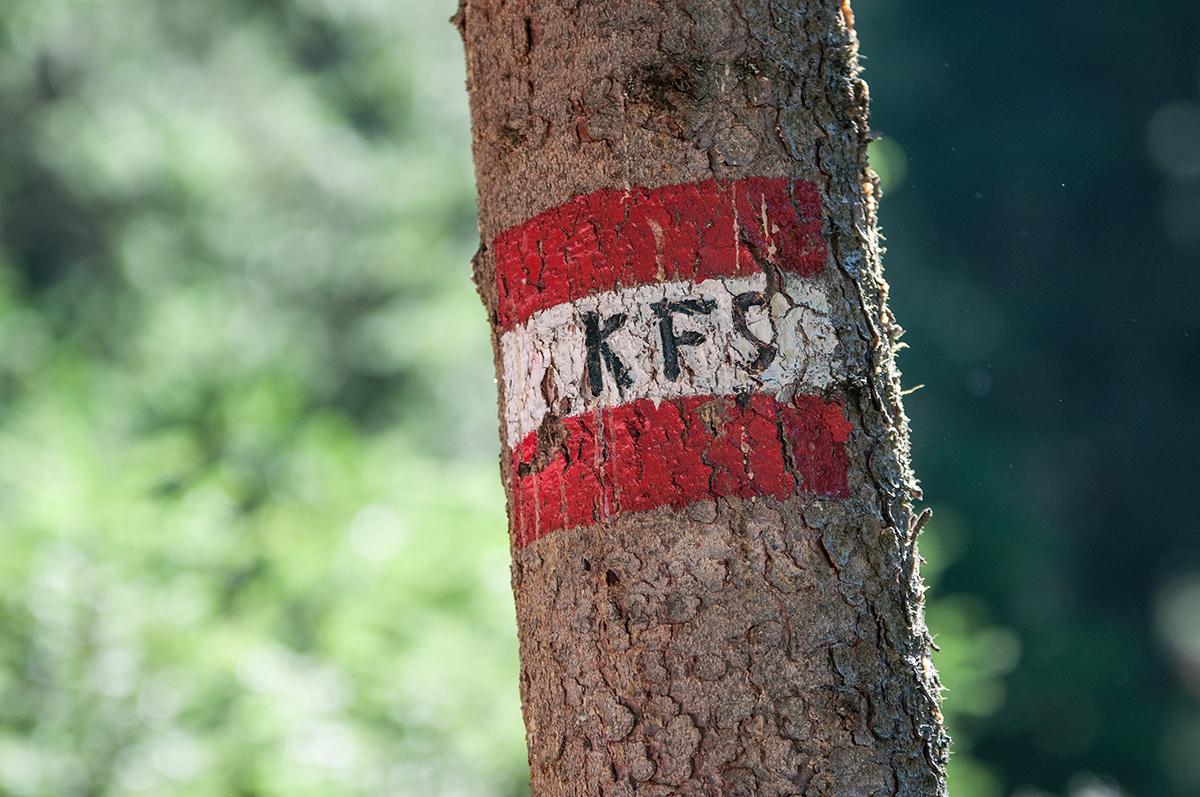 KFS-Wegweiser